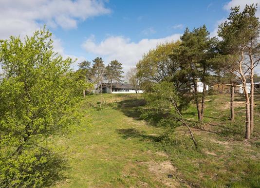 Helårsgrund på Hjelmdrupvej i Egtved - Andet