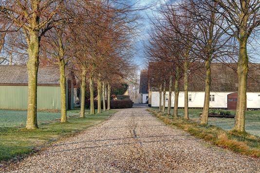 Landejendom på Ved Freerslev Hegn i Hillerød - Område