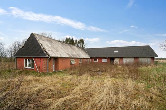 Villa på Lindbjergvej i Ølgod - Omgivelser