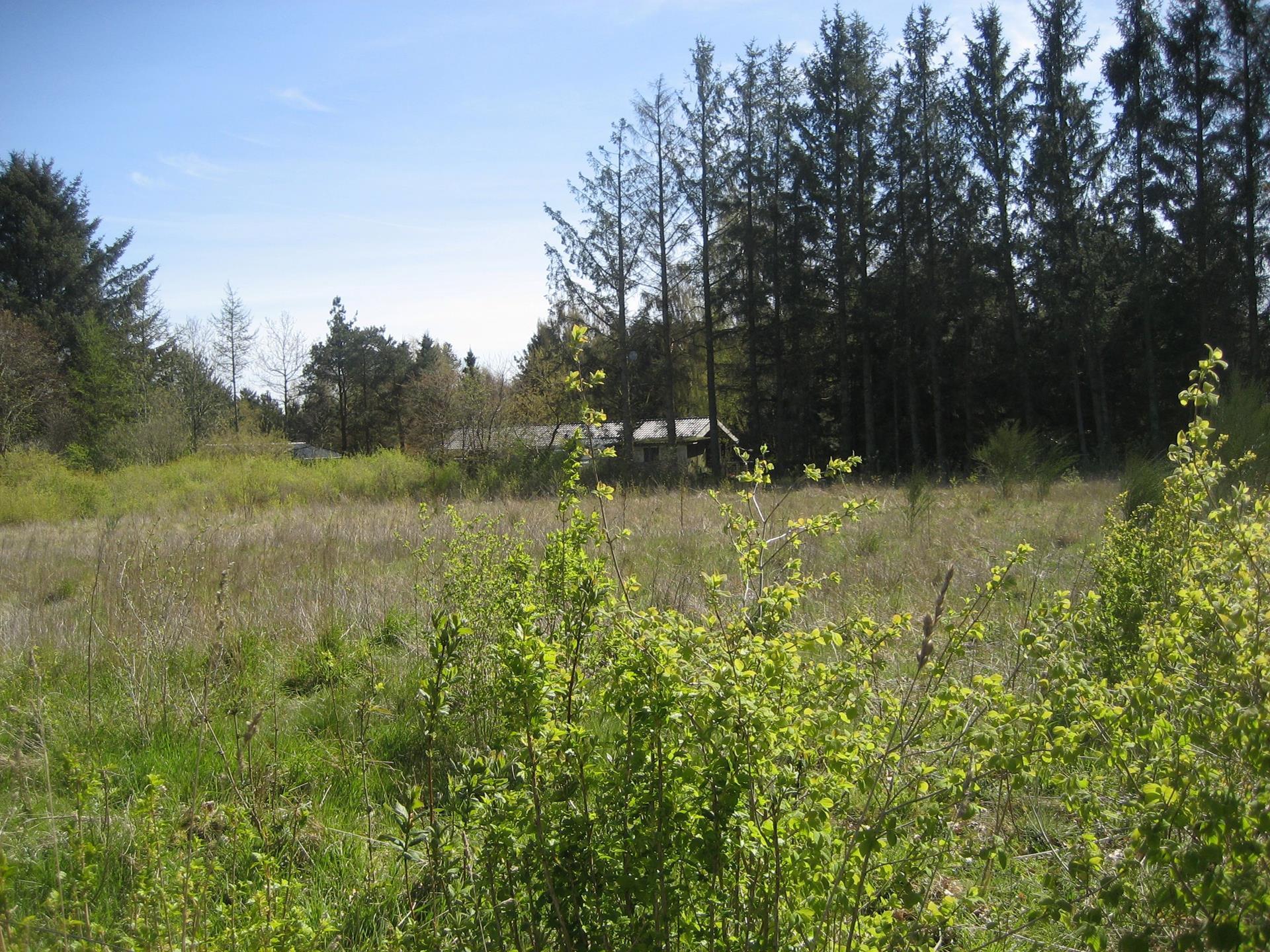 Fritidsgrund på Mosevej i Højslev - Grund