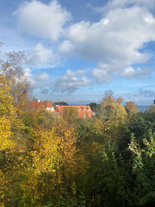 Villa på Rosavej i Klampenborg - Andet