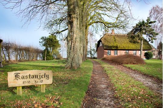 Villa på Aulbjergvej i Gelsted - Ejendommen