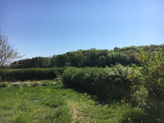 Helårsgrund på Rynkebyvej i Rynkeby - Andet