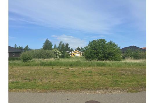 Helårsgrund på Klokkelyngen i Højby - Grund