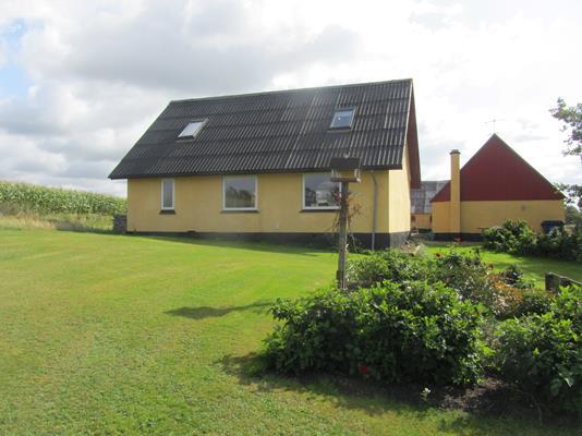 Villa på Trekronervej i Aalestrup - Ejendommen
