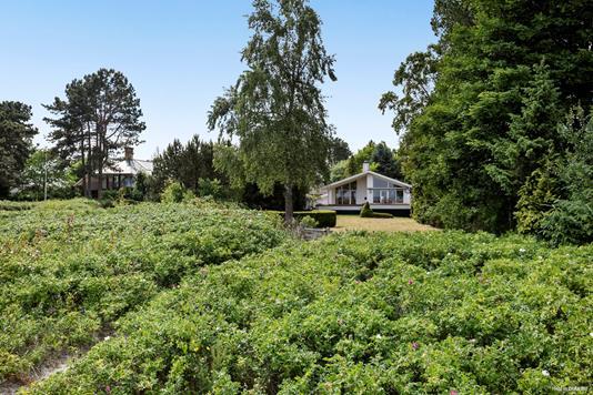 Villa på Kystvej i Solrød Strand - Have