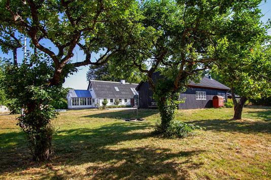 Villa på Oddervej i Horsens - Set fra haven