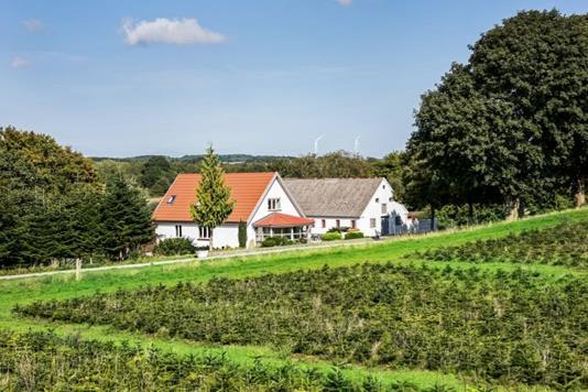 Villa på Haldrupvej i Horsens - Ejendommen